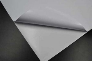 The latest news on our range of self-adhesive media