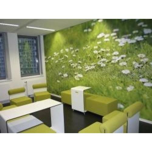 """Neschen Wallpaper Smooth 350gsm 51"""" 1300mm x 50m Roll"""
